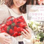 日本人氣潮物の小小收納袋