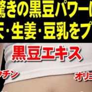 日本健康減肥食品の黑豆