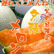 日本人気水果の超甜哈密瓜